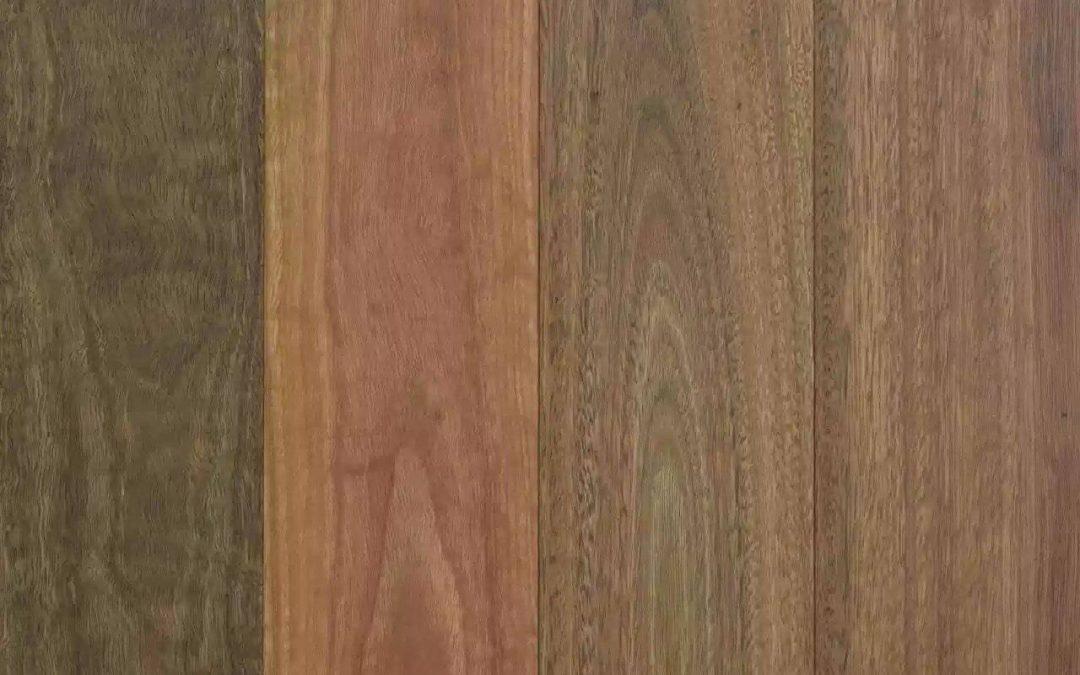Spotted Gum by Plank (Australian hardwood)